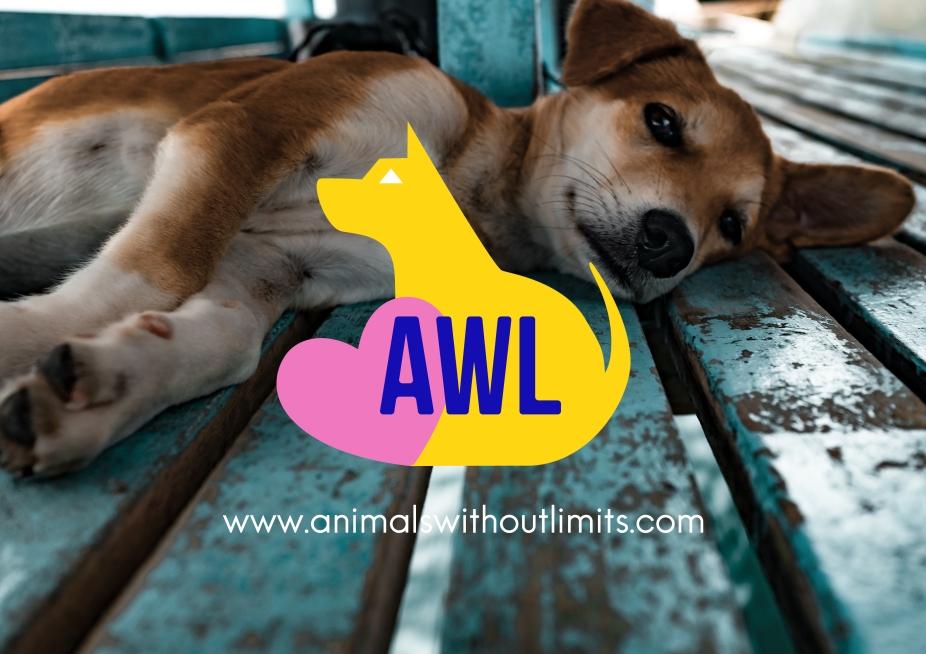Pic_1_logo_link